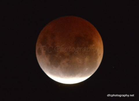 blood-moon_5872