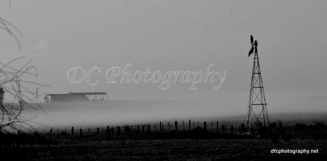 landscape_5741