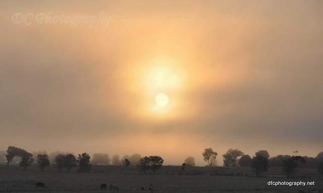 YY-sunrise_1861