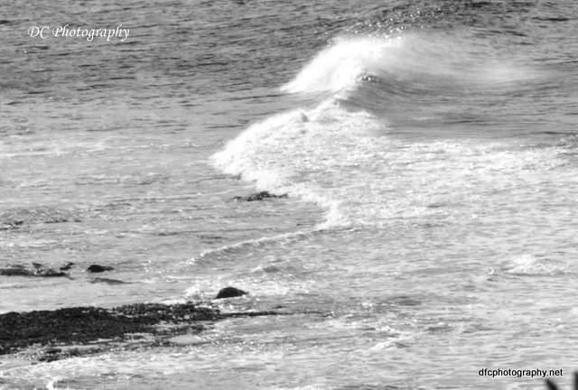 beach_0071a