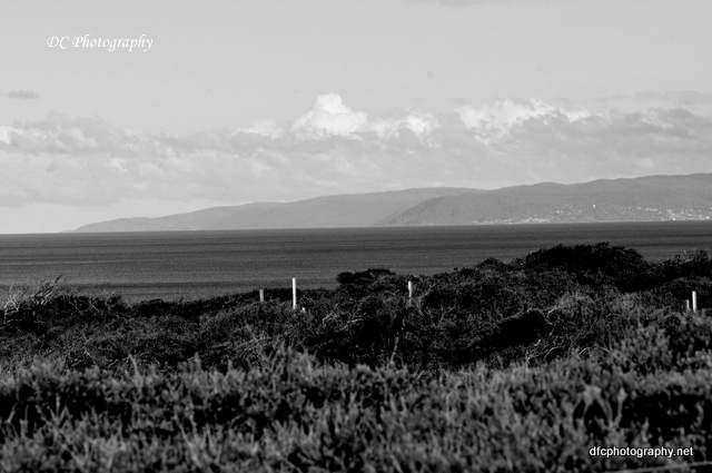 beach_0075