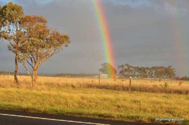 rainbow_0043