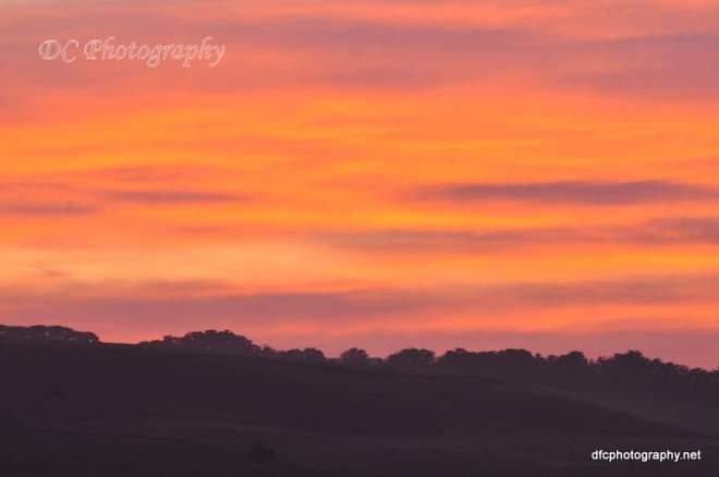 sunrise_006a