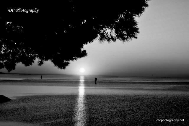 Corio-Bay_6952