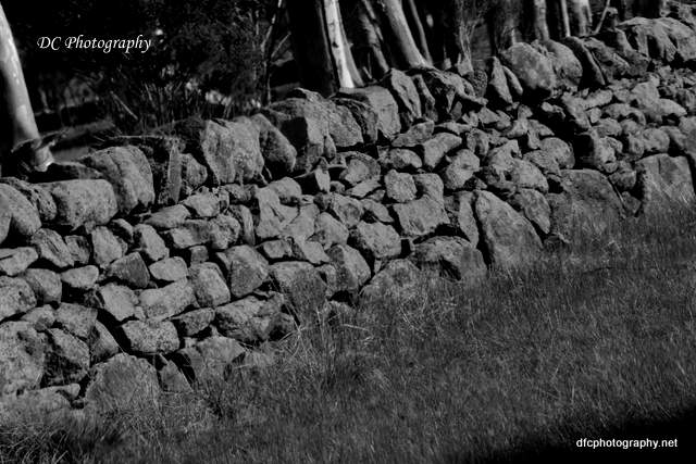 dry-stone-wall_6925