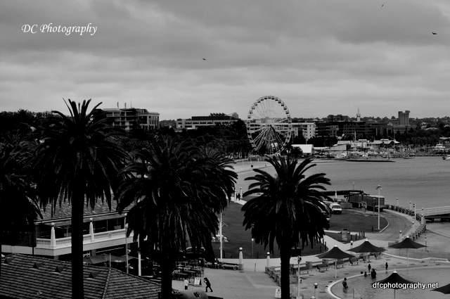 Ferris-Wheel_0002