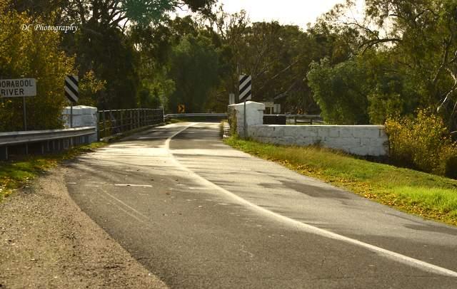 bridge_6217