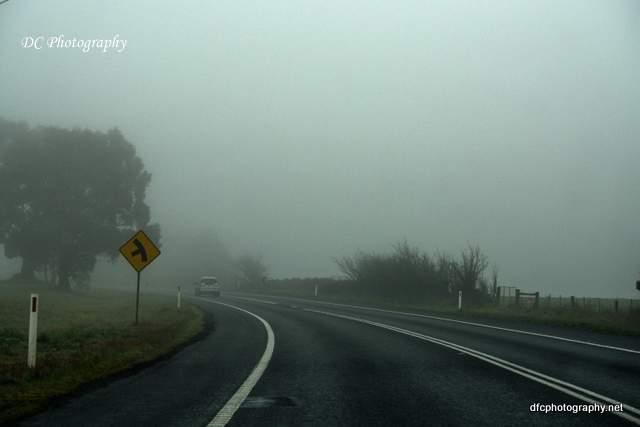 fog_7413