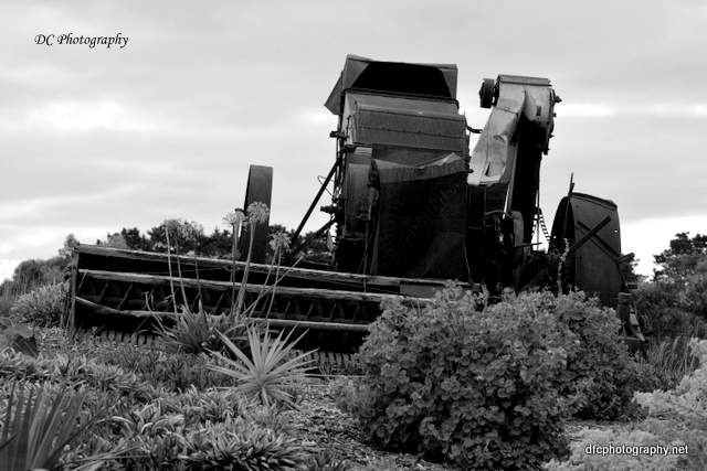 machinery_7377