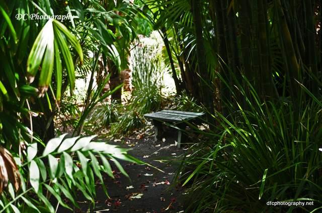 gardens_0074a
