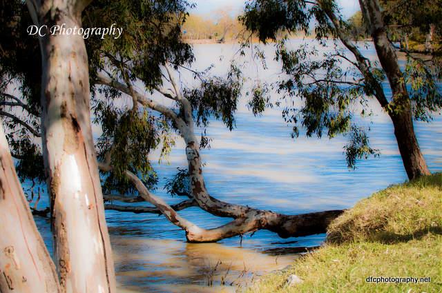 river-7d_0009