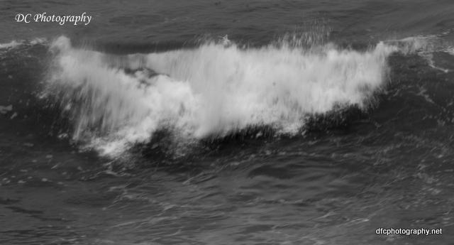 torquay-beach_0013