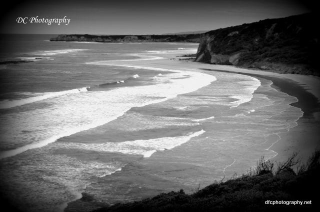 torquay-beach_0019