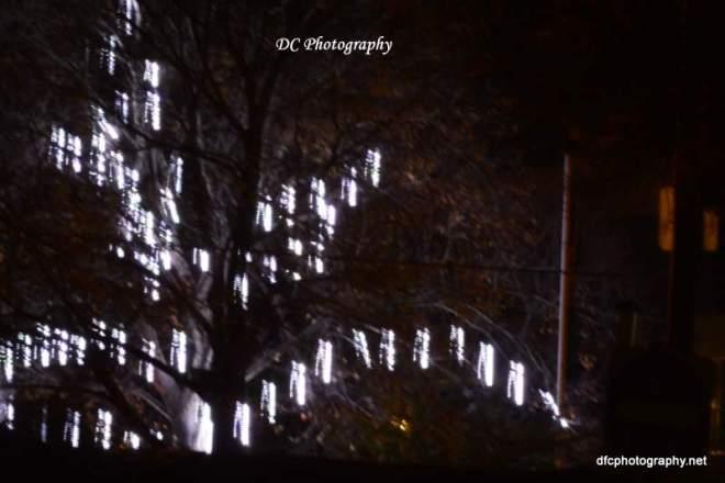 lights_6386