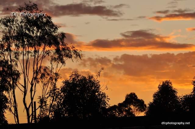 sunset_0606