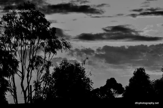 sunset_0607