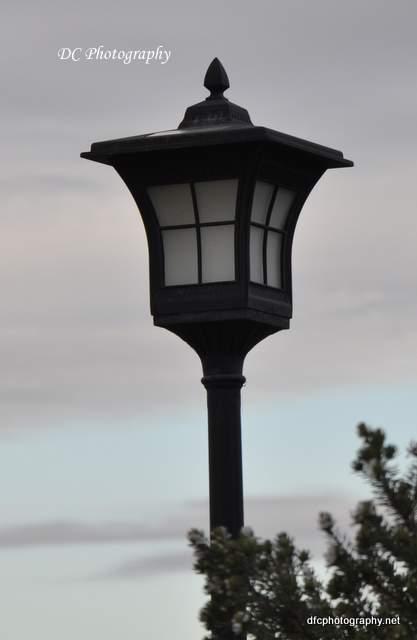 lights_1861