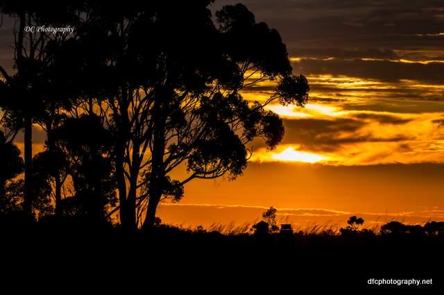 sunset_0801