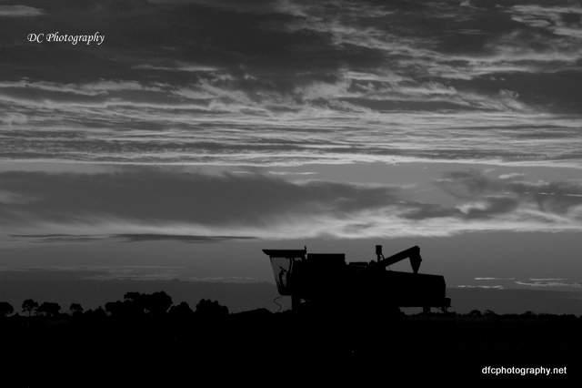 sunset_0848