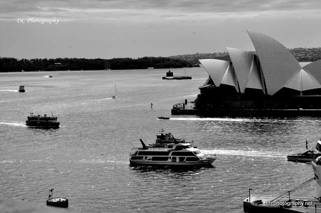Sydney-Harbour_0074