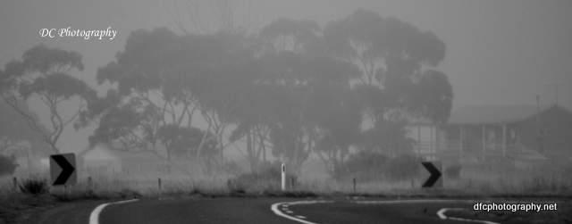 fog_0029