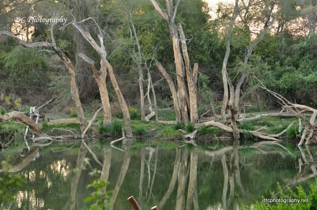 river_0076a