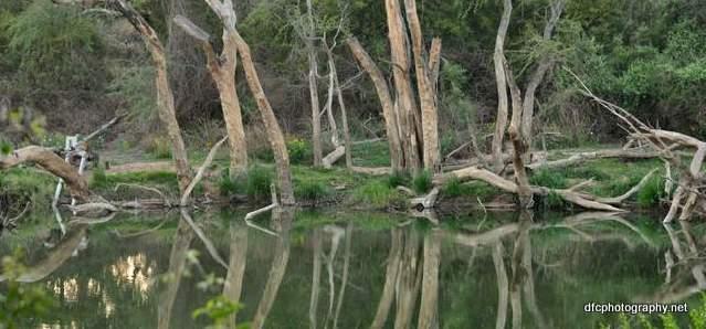 river_0076d