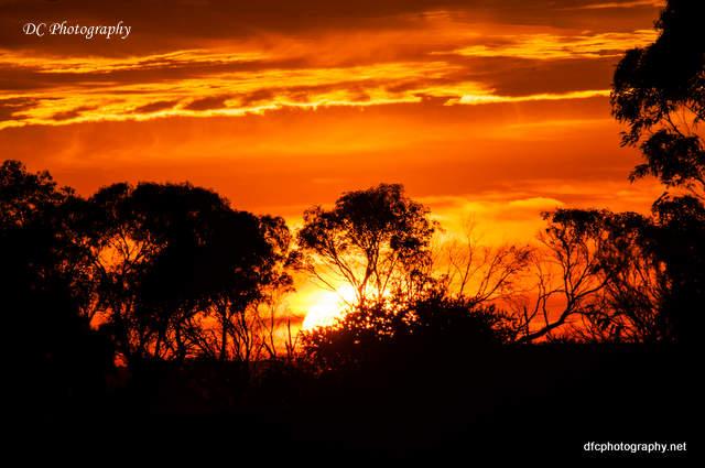 sunrise_0013