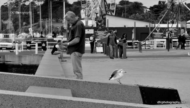 tourist_0153