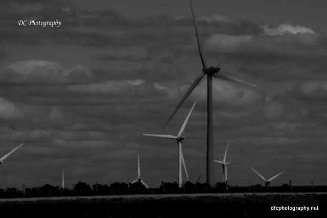 windmill_9213
