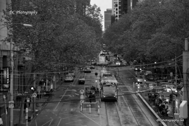 Melbourne_9914