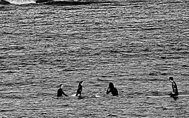 surfers_0045