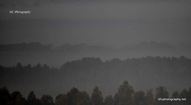 fog_0019