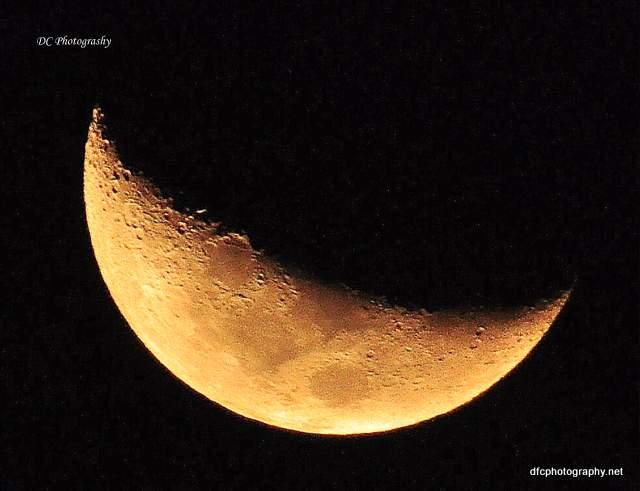 moon-1006-2016_0040