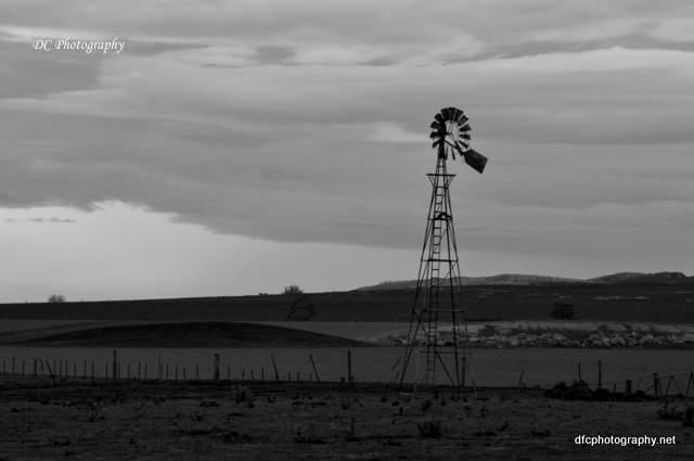 windmill_0074