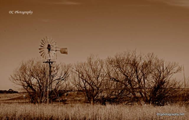 windmill_0382