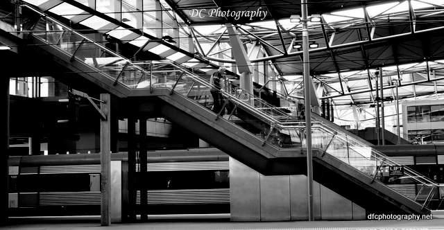 steps_0098