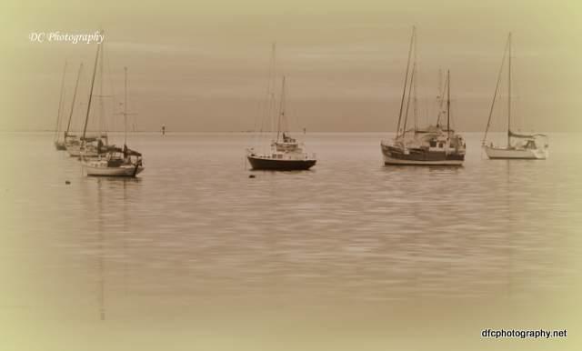 Corio-Bay_0015