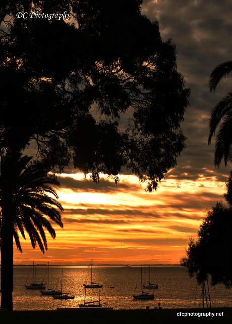 Sunrise - Corio Bay