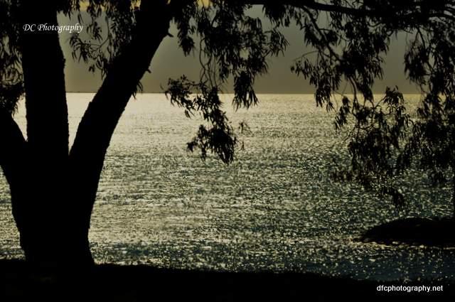 silhouette_0172