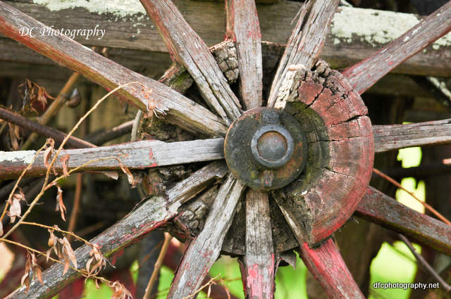 wheel_0190