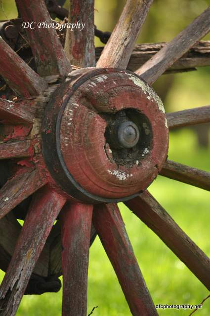 wheel_0191a
