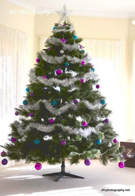 christmas-2014_2277