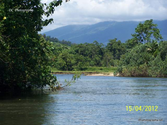 daintree_river_5108