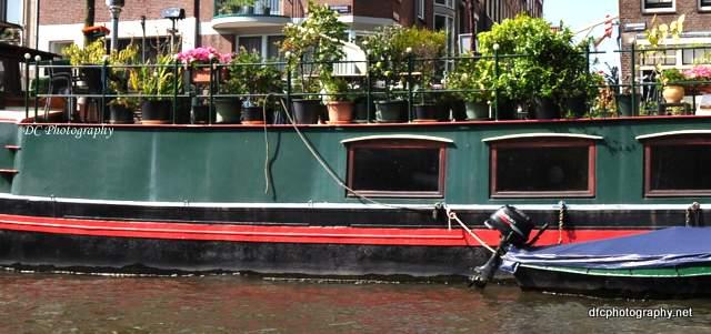 amsterdam-garden_0433