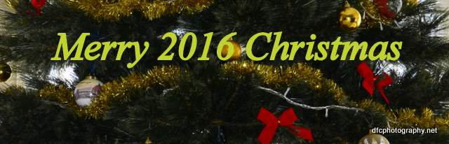 christmas_2016_4043