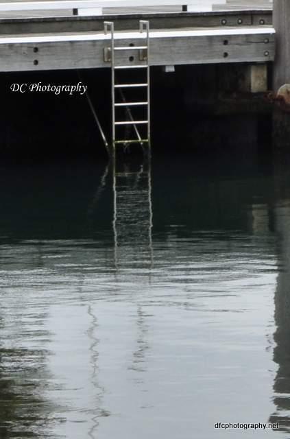 ladder_0024