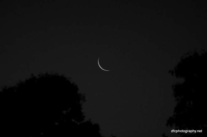 moon_0185