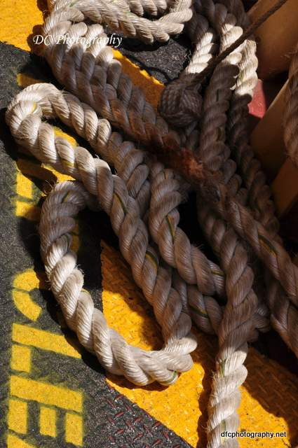 rope-sydney_0362