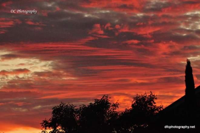 sunset_0205
